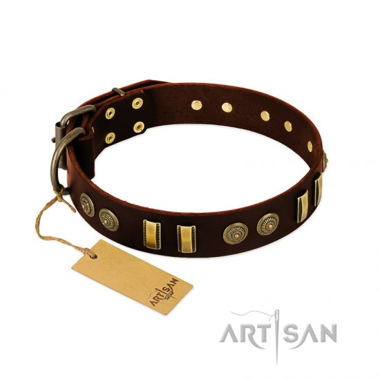"""Golden Elegance"" FDT Artisan Brown Leather dog Collar with Old Bronze-like Decorations"