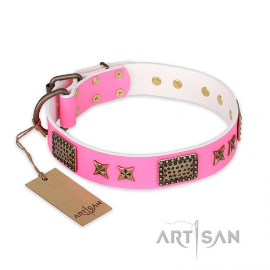"""Tender Pink"" FDT Artisan Leather dog Collar with Old Bronze Look Stars and Plates"