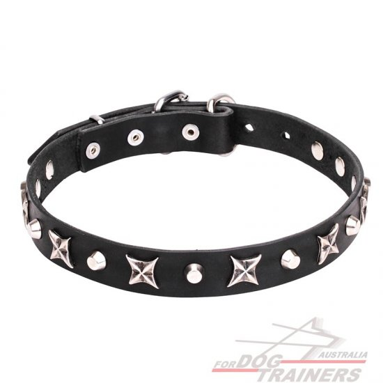 1 inch (25 mm) Leather Dog Collar with Shiny Nickel Plated Stars and Pyramids