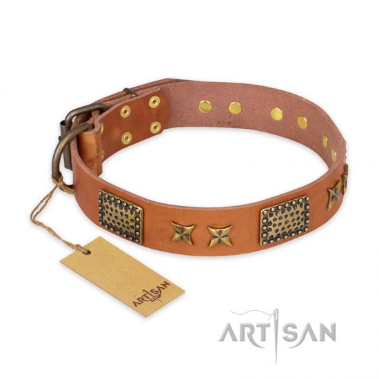 """Cosmic Traveller"" FDT Artisan Adorned Leather dog Collar with Old Bronze-Plated Stars and Plates"