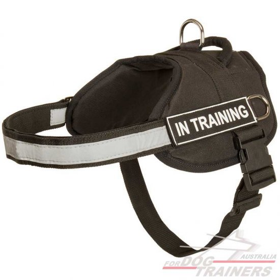 Nylon Dog Harness With Reflective Straps for Training, Walking, Police Service, SAR and More