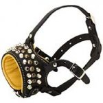 Fashion Studded Nappa Padded Dog Leather Muzzle