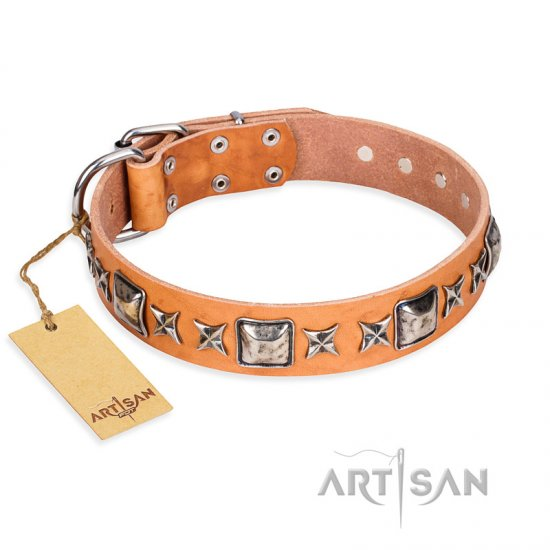 """Glamour Finery"" FDT Artisan Female dog collar of natural leather with stylish old-looking circles"