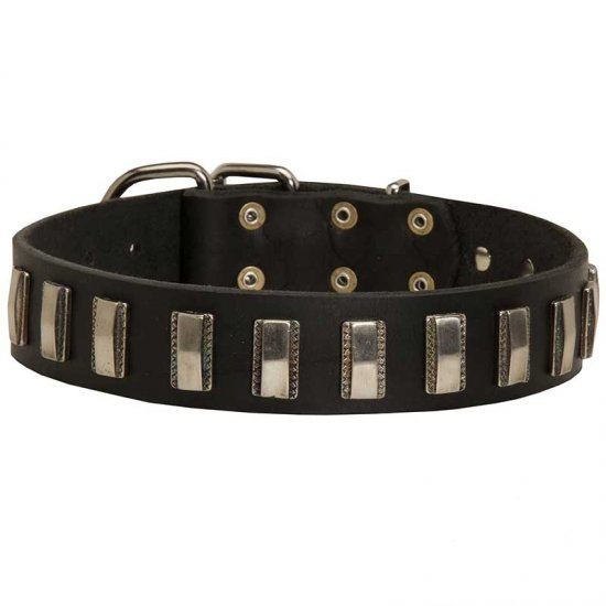 Fashionable Leather Collar with Plate Decorations