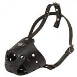 Easy Adjustable Anti-Barking Leather Dog Muzzle for Training and Walking