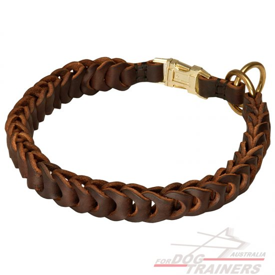Gorgeous Leather Dog Collar With Braids