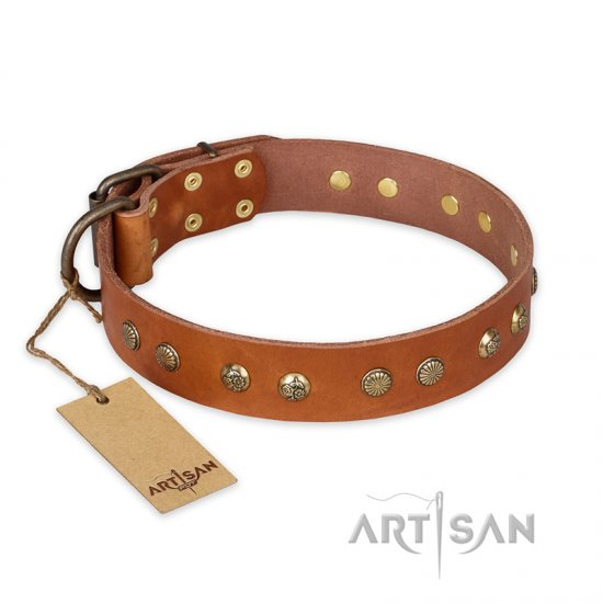 """Spring Flavor"" FDT Artisan Adorned Leather dog Collar with Old Bronze-Plated Engraved Studs"