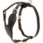 Y-shape Attack/Protection Training Leather Dog Harness