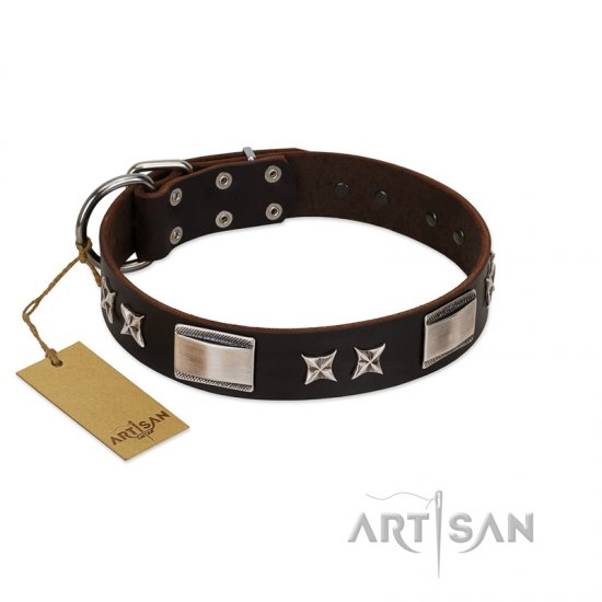 """Satin Beauts"" FDT Artisan Brown Leather dog Collar with Stars and Plates - Click Image to Close"