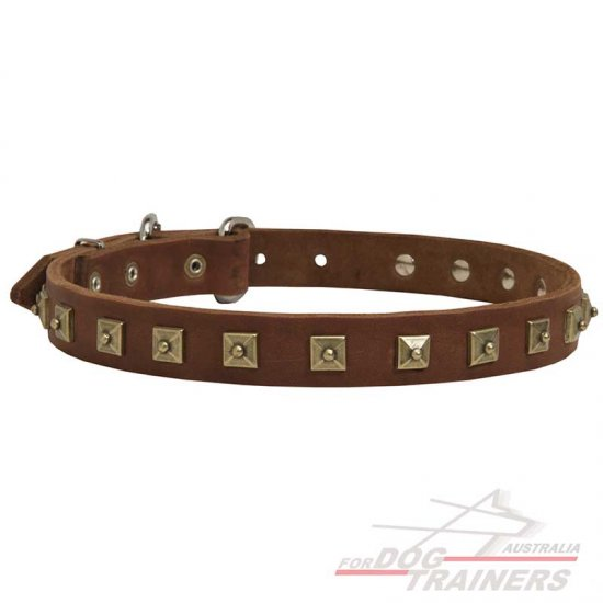 Gorgeous Decorated Leather Collar