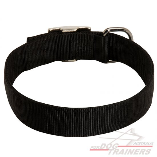 2 Ply Nylon Wide Dog Collar