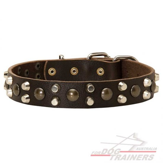 Leather Dog Collars with Studs and Pyramids