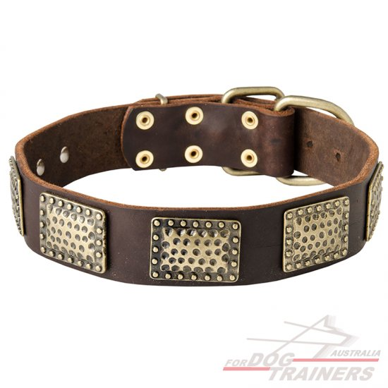 Walking Dog Collar Made of Leather