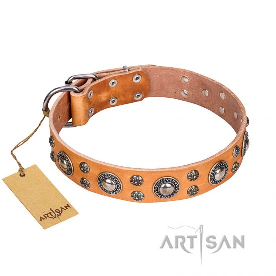 """Extra Sparkle"" FDT Artisan Handcrafted Tan Leather dog Collar"