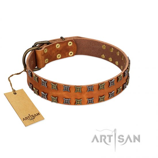 """Terra-cotta"" FDT Artisan Tan Leather dog Collar with Two Rows of Studs"