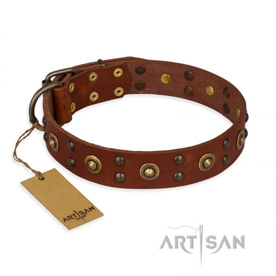 """Unfailing Charm"" FDT Artisan Studded Tan Leather dog Collar"