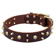'Hard Rock' Leather Dog Collar with Brass Spikes and Skulls