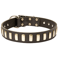 Gorgeous Leather Dog Collar with Plates