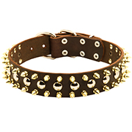 Designer Leather Spiked and Studded Dog Collar
