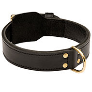 Extra Strong 2 ply Leather Dog Training Collar