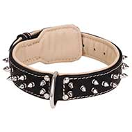 Leather dog collar with 2 rows of nickel-plated spikes