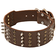 Spiked and Studded Extra Wide Leather Collar
