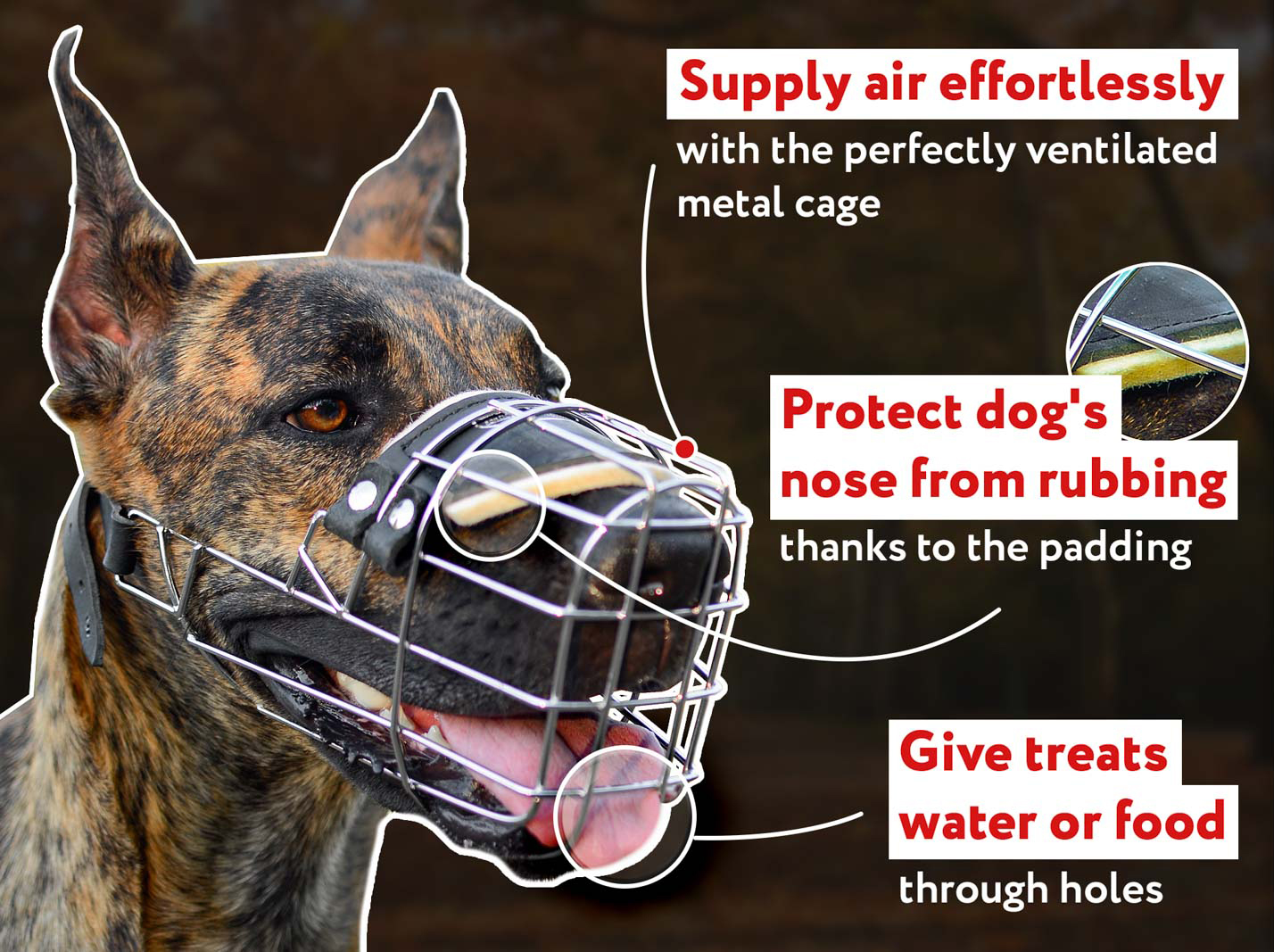 One Strap Wire Basket Dog Muzzle