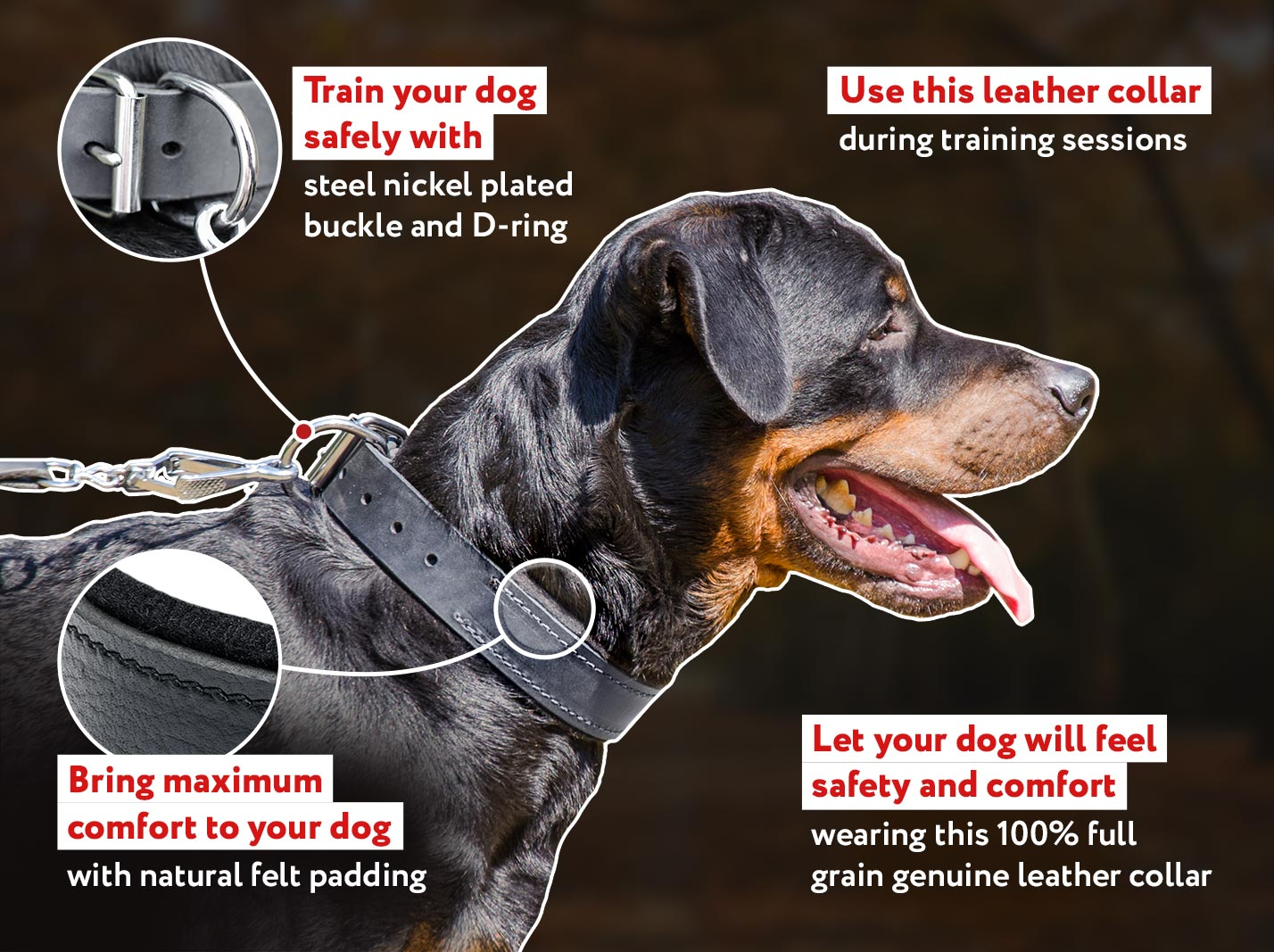 Durable Padded Leather Collar