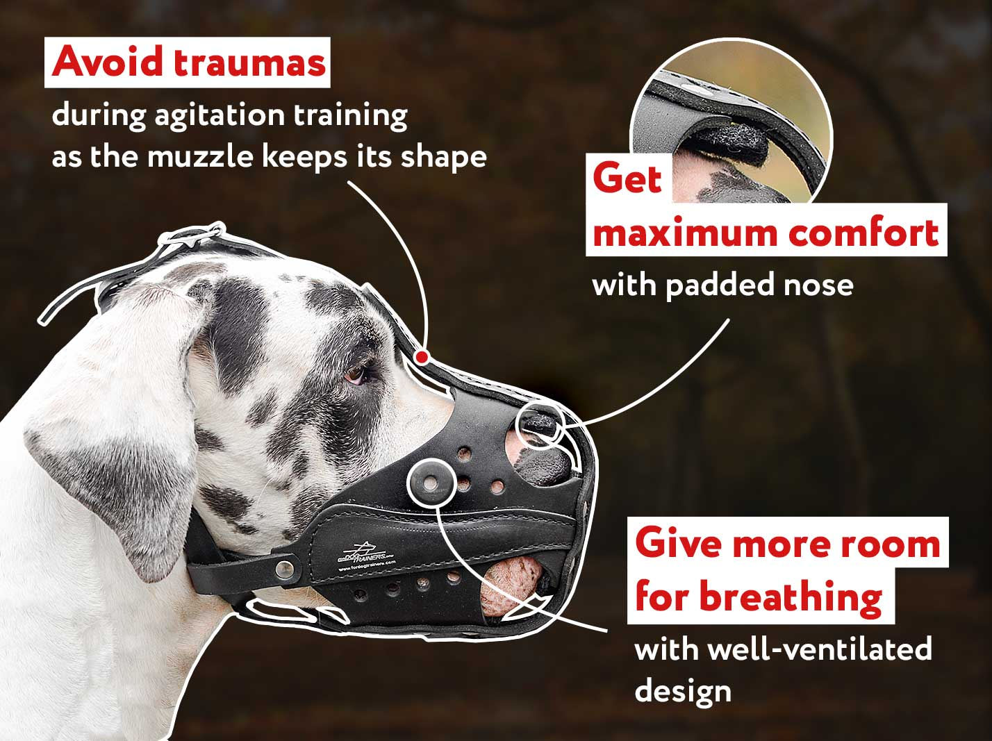 Attack/Agitation Leather Canine Muzzle for Working Dog Breeds
