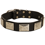 New Design Leather Dog Collar with Nickel Plates