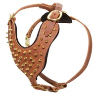 Exquisite Padded Leather Dog Harness with Brass Spikes