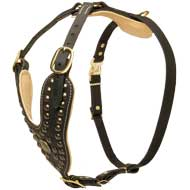 Luxury Designer Padded Leather Dog Harness