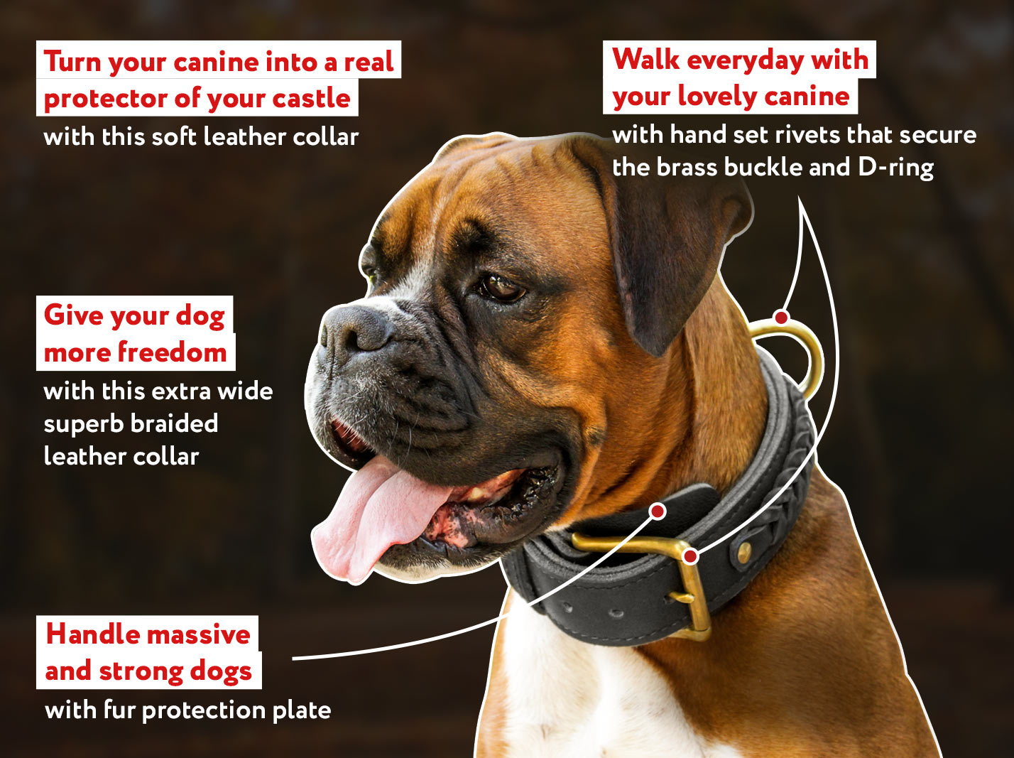 Braided Wide 2 Ply Leather Dog Collar