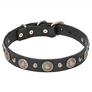"""Magic Necklace"" Leather Dog Collar with Brass Circles and Studs - 1 1/5 inch (30 mm)"