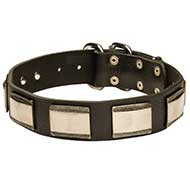 Gorgeous New Design Leather Dog Collar with Brass Plates