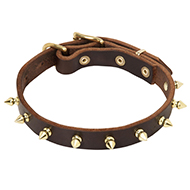 Golden Spikes Leather Walking Collar