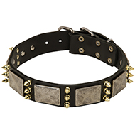 Designer Spiked Leather Dog Collar with Vintage Nickel Massive Plates and 3 Brass Spikes