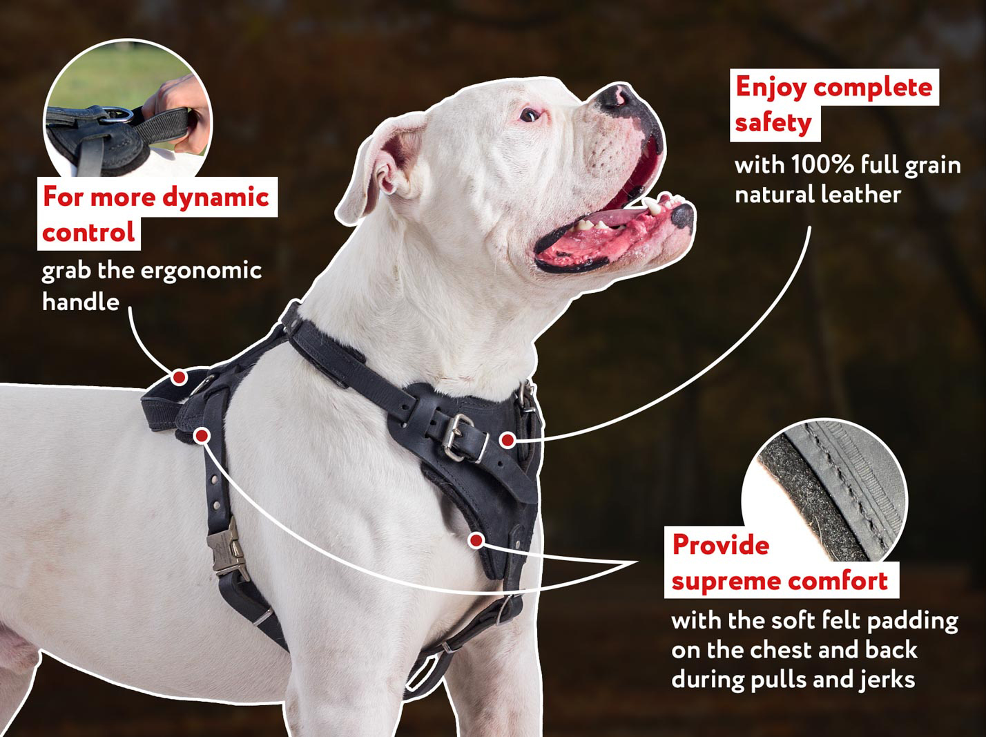 Best Training Agitation / Protection Leather Dog Harness for Large Breeds