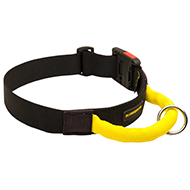 Water Resistant Nylon Dog Collar with Comfortable Handle
