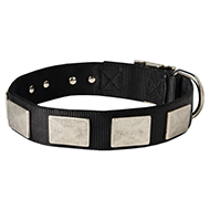 Fashionable Nylon Dog Collar with Vintage Plates