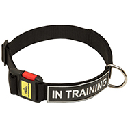 Multipurpose Service Nylon Collar with Patches
