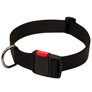 Nylon Dog Collar with quick release buckle