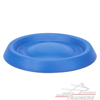 Easy to use foam disc