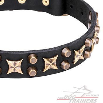 Bronze plated stars and pyramids on leather dog collar