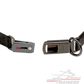 Reliable Click Lock Buckle title=