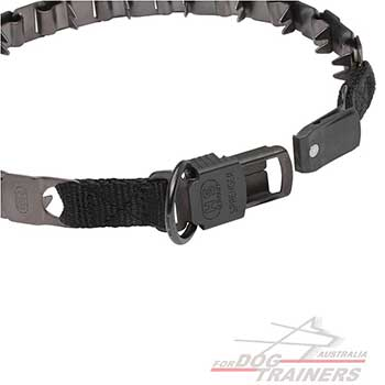 Adjustable Dog Pinch Collar