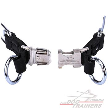 Pinch Dog Collar Made of Chrome Plated Steel