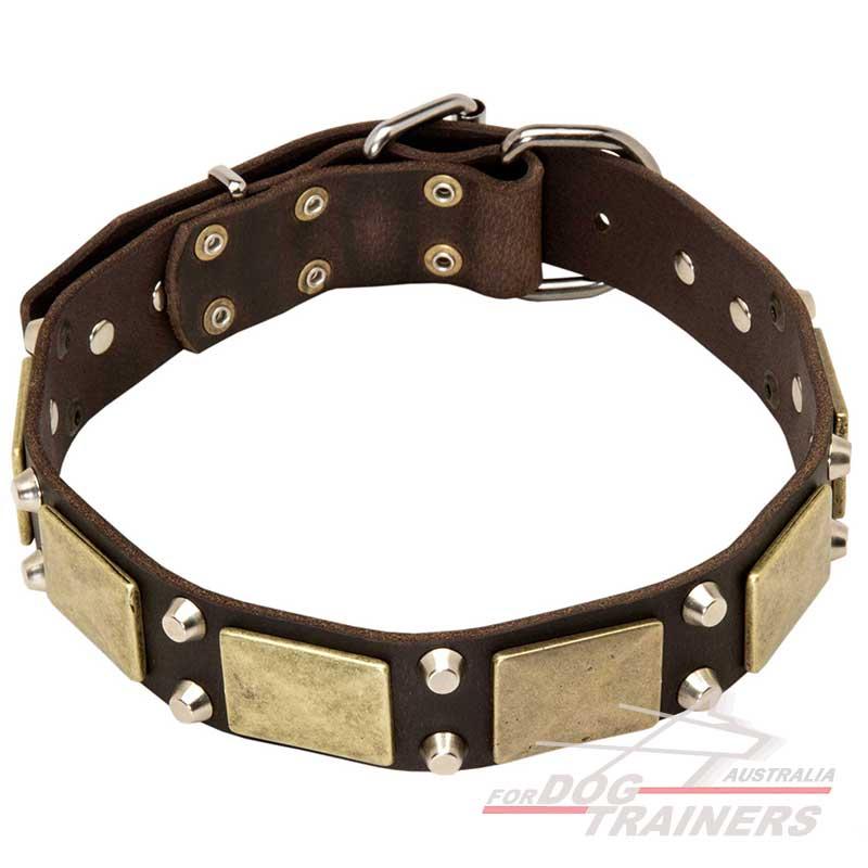 Studded Dog Collars Australia