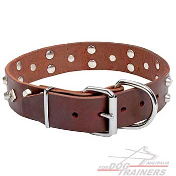 New Leather Dog Collar with Shining Nickel Plated Hardware