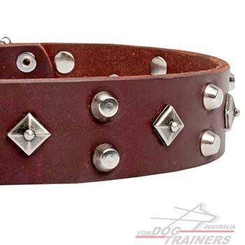 Everlasting Riveted Brown Leather Dog Collar